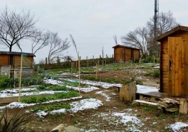 jardin hendaye sous la neige